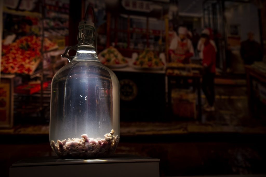 Mouse wine in the Disgusting Food Museum